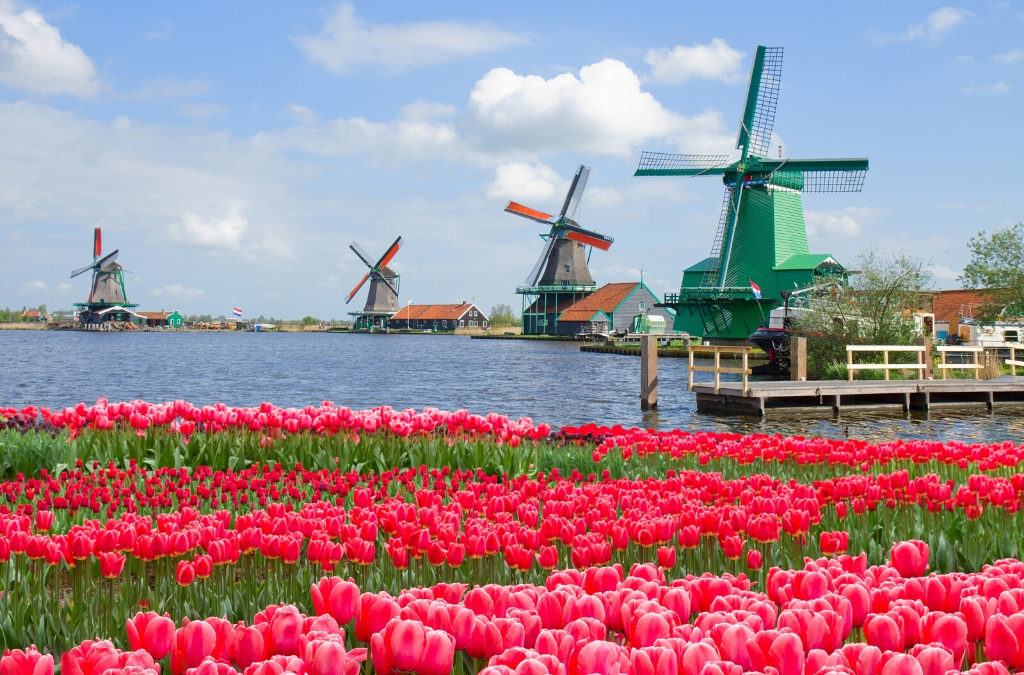 community based tourism course in Netherlands